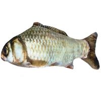 쿠치올로 캣닢 물고기 붕어