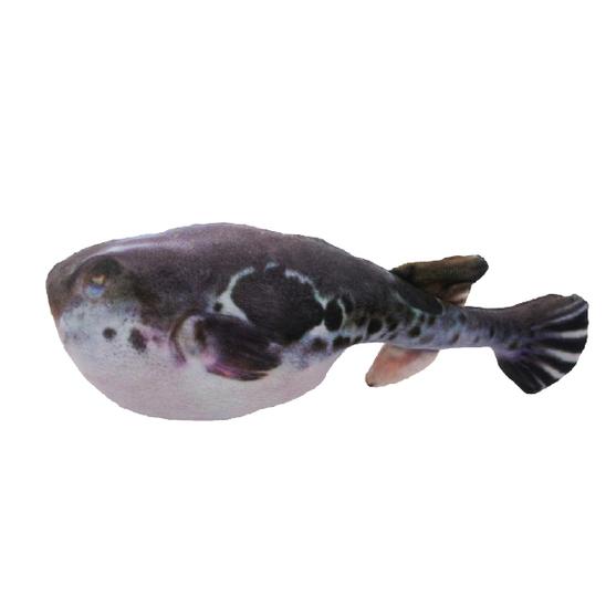 아미캐롤 캣닢 물고기인형 복어 사진