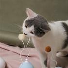 피단 벌룬 고양이 장난감 블루 사진