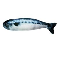 쿠치올로 캣닢 물고기 고등어