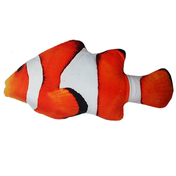 쿠치올로 캣닢 물고기 니모