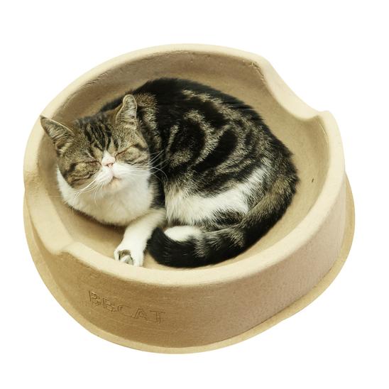 푸르미 비비캣 고양이 종이방석 사진