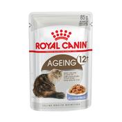 로얄캐닌 고양이 에이징 12+ 젤리 파우치 85g
