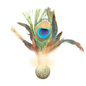 캣완트 공작깃털 캣닢볼