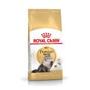 로얄캐닌 고양이 페르시안 어덜트 2kg